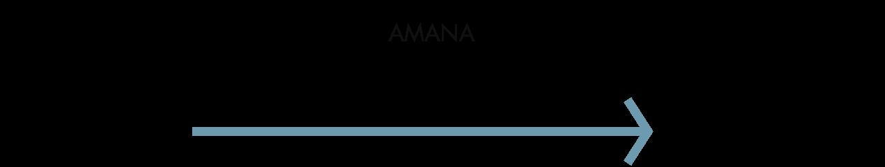amana-focus-1