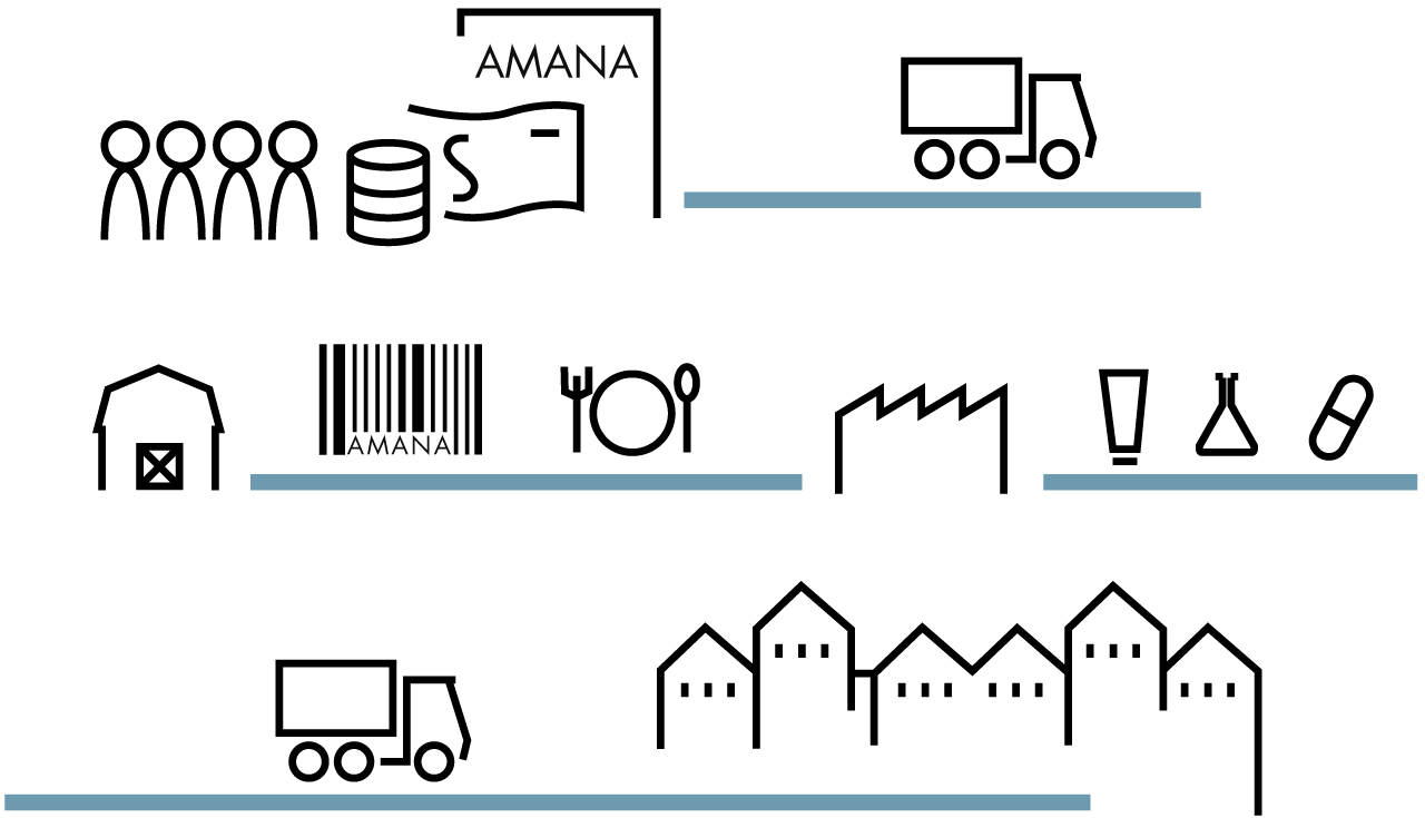 Amana investment fund Process